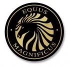 equus magnificus