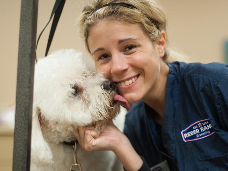 Reber ranch pet store vet in kent wa pet supplies feed dog reber ranch rewards program solutioingenieria Image collections