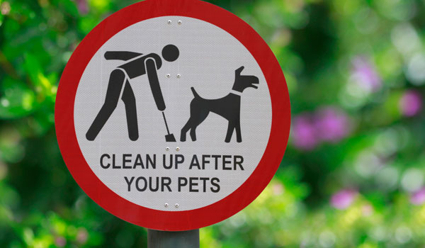 Pet Cleanup Products