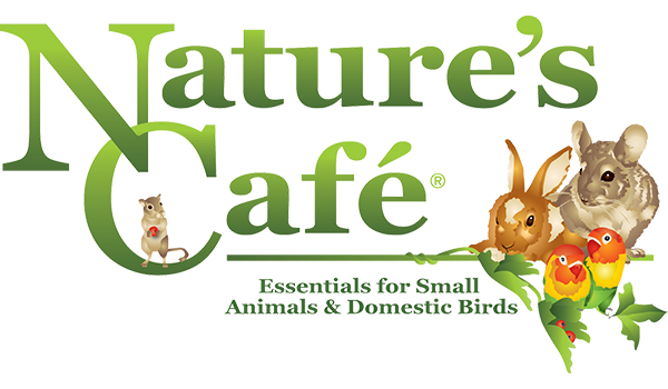 Nature's Cafe